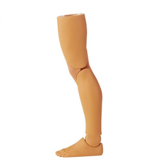 Watcher Left leg